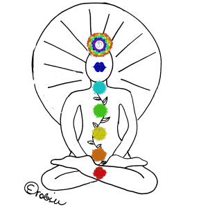 the seven major chakras