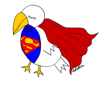 superbird by robin hallett