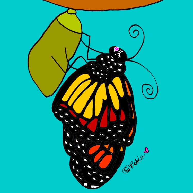 Butterfly by Robin Hallett